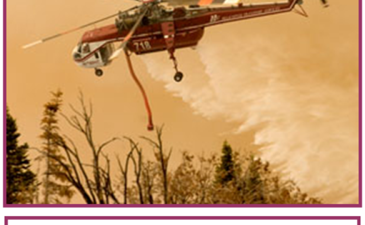 Wildfires in New York State – Yes, They Happen How to Protect Your Family and Your Home