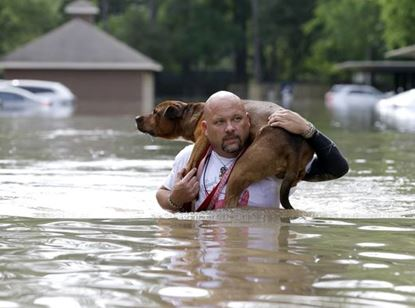 Flood_man carrying dog